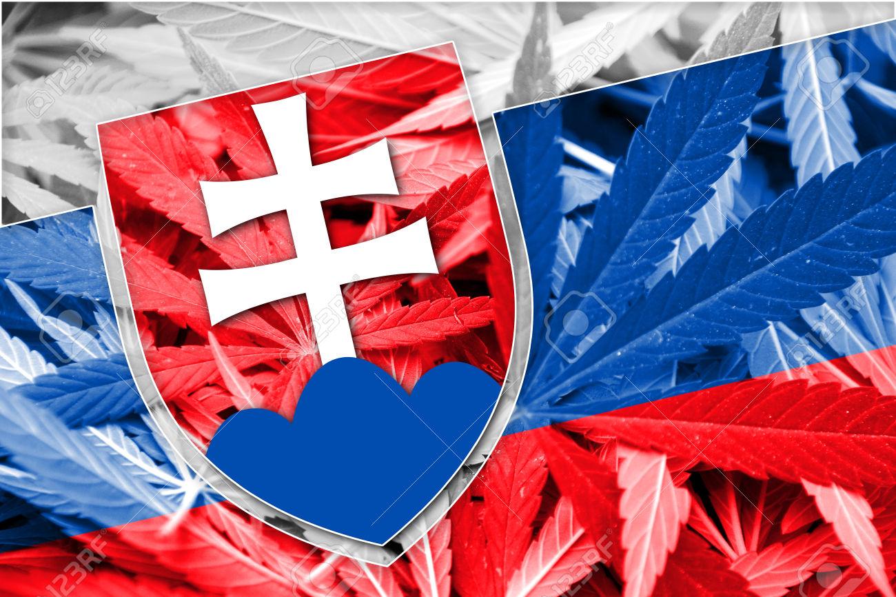 Na Slovensku rastie akceptácia marihuany najmä medzi mladými ľuďmi