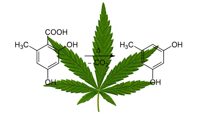 cannabis-decarboxylate