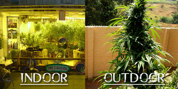 Indoor vs. Outdoor