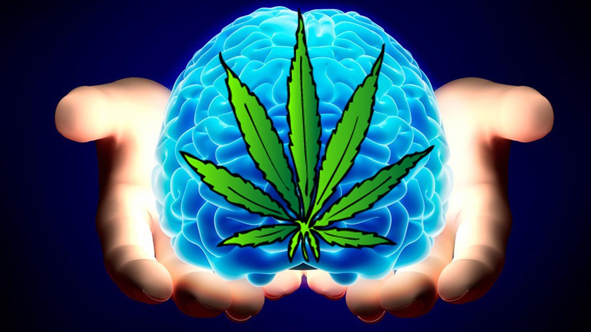 Konope znižuje prejavy Parkinsonovej choroby!